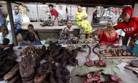 Women sell bushmeat monkey meat in a market in Kisangani, RDC