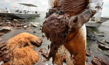 Deepwater Horizon BP oil spill: A clean-up worker picks up blobs of oil in absorbent snare