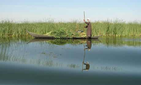 Mesopotamian marshes of Iraq
