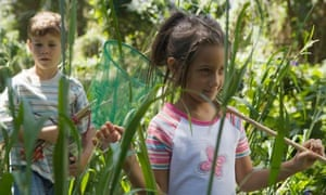 Children hunting for  butterflies with a net