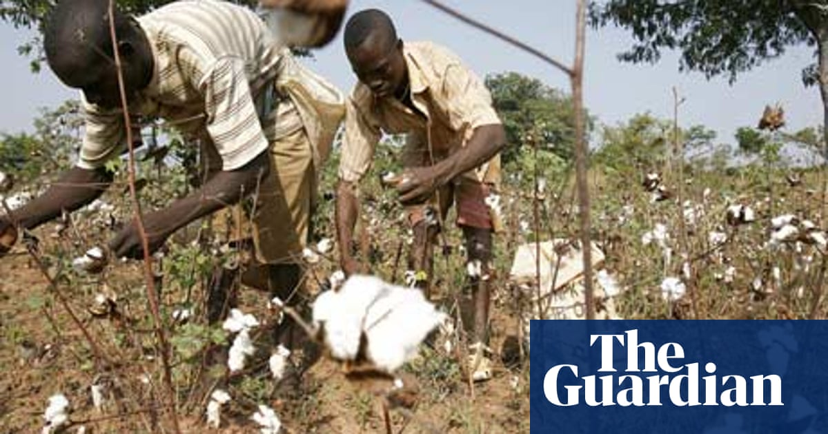 The WTO has failed developing nations | Aurelie Walker