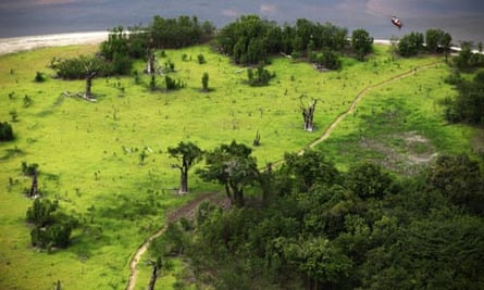 Drought Effects In Manaus Region, Amazon, Brazil