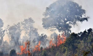 Wildfire is threatening  rainforest of Bulang Mountain located in Xishuangbanna, Yunnan , China