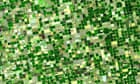 Agricultural pattern