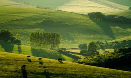 South Downs, Telscombe