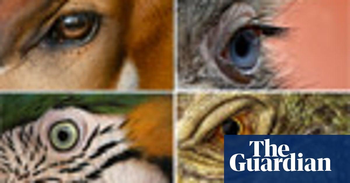 Eye spy: can you identify an animal by its eye - quiz