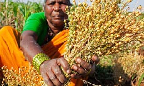 Dalit women fighting starvation in Andhra Pradesh , India, with Christian Aid and DDS