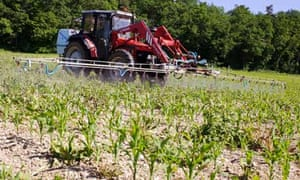Leo blog : Farmer spraying  pesticides