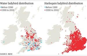 Ladybird maps