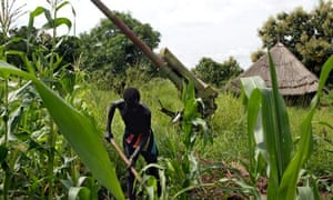 El Nino and war :  war between the SPLA and Sudan government