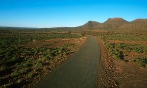 Road Through Karoo Vegetation in South Africa
