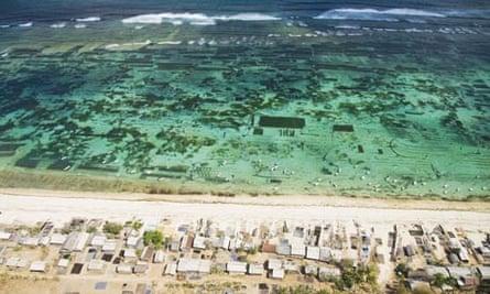 Damian blog : Seaweed farm on the Bukit Peninsula of Bali, Indonesia