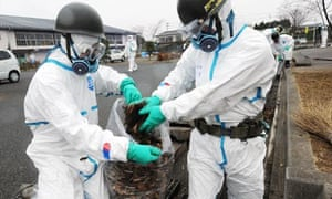 Japan's soldiers collect fallen leaves during decontamination mission in Fukushima