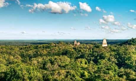 Maya Biosphere Reserve in Guatemala and Tikal National Park