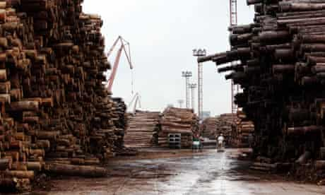 Imported timber at a dock in Shanghai, China