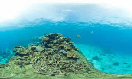Underwater landscape taken Catlin Seaview Survey