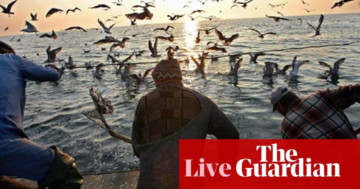 Would an EU ban on fish discards be effective? | Leo Hickman