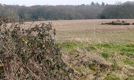 Sandleford Warren, in Newbury, Berkshire whre Watership Down novel starts