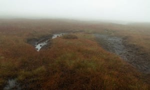 Blanket bog ( peatland ) in mist near Brown Knoll, Peak District, North Derbyshire, England, UK
