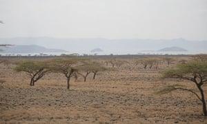 MDG : The Lake Turkana Wind Power Project  ( LTWP ) near Lake Turkana in Kenya