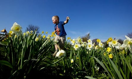 alt txt : Children losing touch with nature, says National Trust report