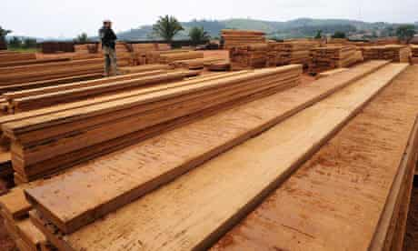 Environmental crime : illegal logging : sawmill in near the Amazonic Forest reserve of Trairao