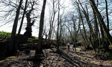 Drought alert in Yorkshire : Walkers make their way along the dried up bed of the River Riccal
