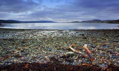 Investigating the ecosystem impacts of geological carbon storage CCS in Ardmucknish Bay Scotland