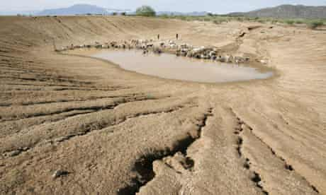 Drought in Kenya : Nomadic pastoralists Turkana tribesmen herd goats and sheep to a almost dry dam
