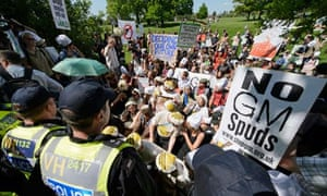 Anti-GM protest at in Harpenden, Hertfordshire