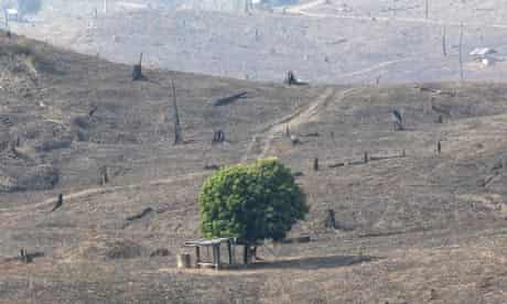 MDG : Green Economy and Forests REDD : hills of  burnt out brown and deforested land in Thailand