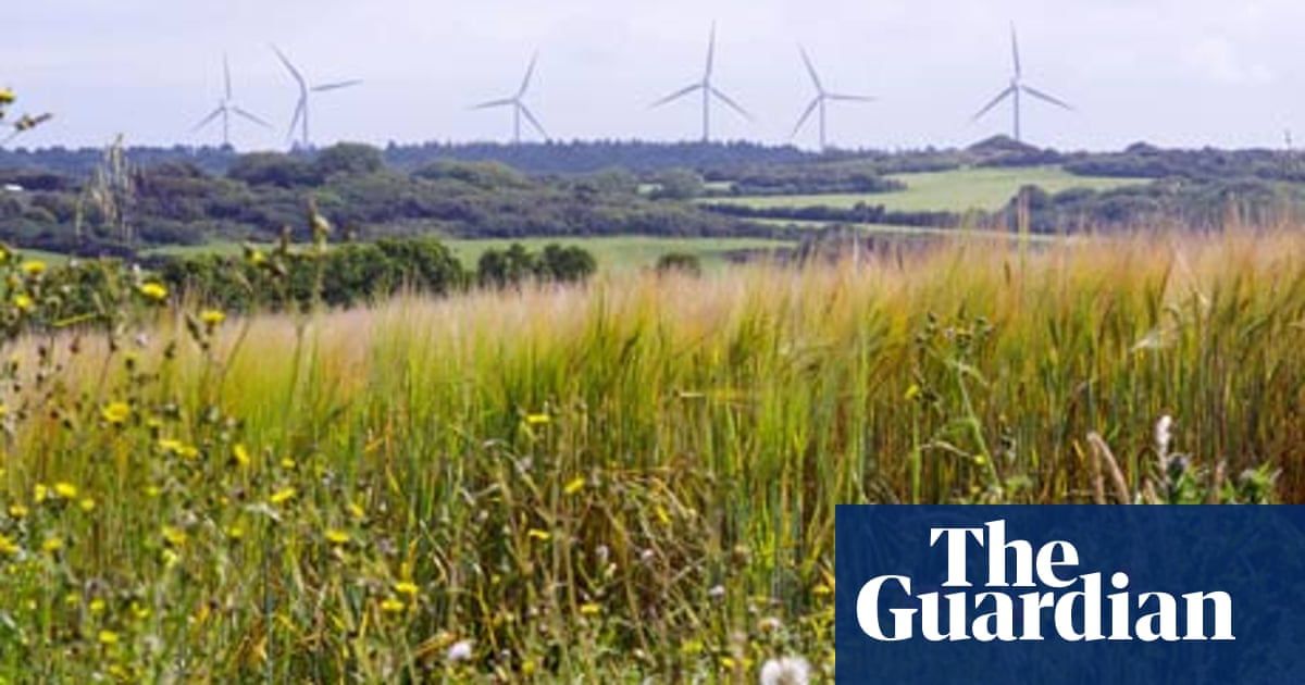 Why there's only one honest objection to wind farms | Damian