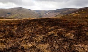 Walshaw moor gouse estate fire burning : Fire-damaged moor :