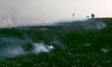 Walshaw Moor gouse estate fire burning :  Heather burning on a grouse moor, North Pennines
