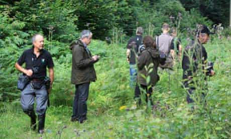 Butterfly spotting expedition in Sussex pastures