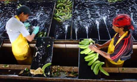 MDG : EU trade : Costa Rican bananas workers , Costa Rica