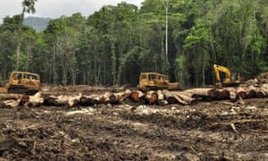 MDG : Papua New Guinea land grab : Logging vehicles operate in a logging concession