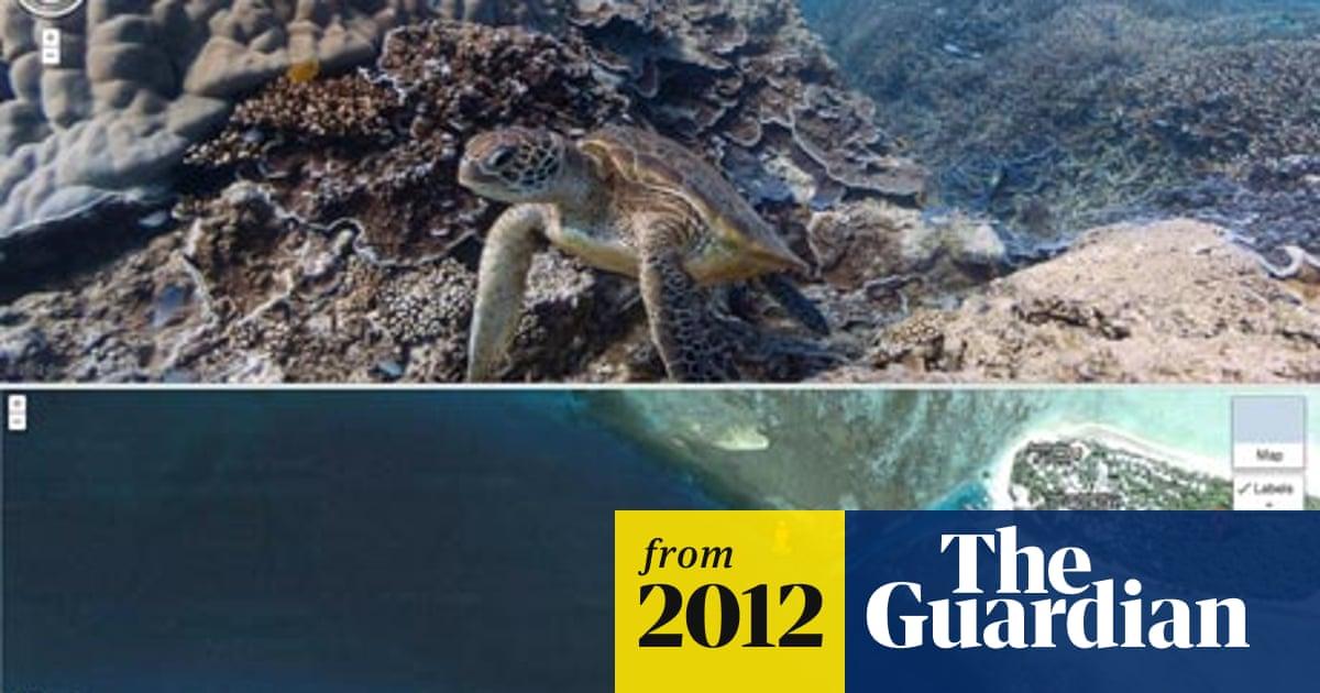 Google Maps' virtual diving brings the Great Barrier Reef ... on google map hawaiian, google earth underwater, google street view, google underwater mr.doob, google gravity underwater,