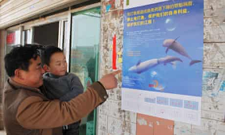 River fish species depletion due to electro-fishing featuring finless porpoises, Hunan province