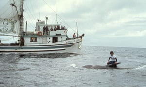 Greenpeace first anti whaling campaign : Phyllis Cormack ship and Paul Watson on Killed Whale