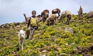 MDG : Concern Worldwide : Ethiopia Global Hunger Index Visit