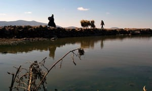 MDG : Peru and Development : A general view of the polluted water of Cohana Bay in Titicaca lake