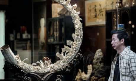 CITES in Bangkok : Ivory trade in China