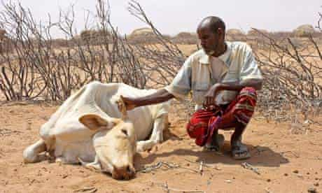 MDG Kenya pastoralist