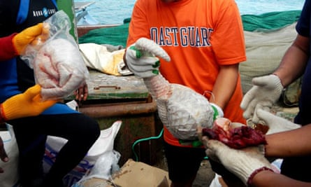 Philippine coast guard inspect frozen pangolins found in the Chinese cargo in Palawan island