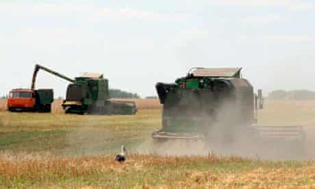 MDG Ukraine farm