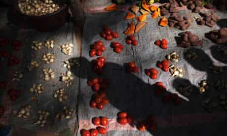 MDG : Food in Africa : tomatoes for sale in the central market in Diabaly, Mali