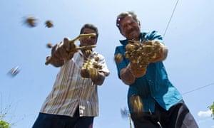 MDG : Brazil : Farmers and biofuel