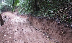 Peru Blog : The illegal road running towards the Purus National Park