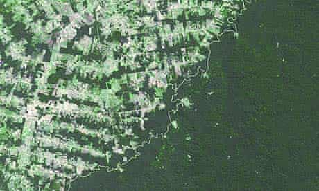 Amazon : deforestation in Brazil and rainforest in Bolivia